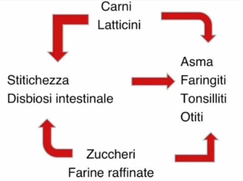 carni-latticini-zuccheri-farine-raffinate-causano-stitichezza-asma